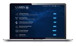 Lumin-on-Laptop-2